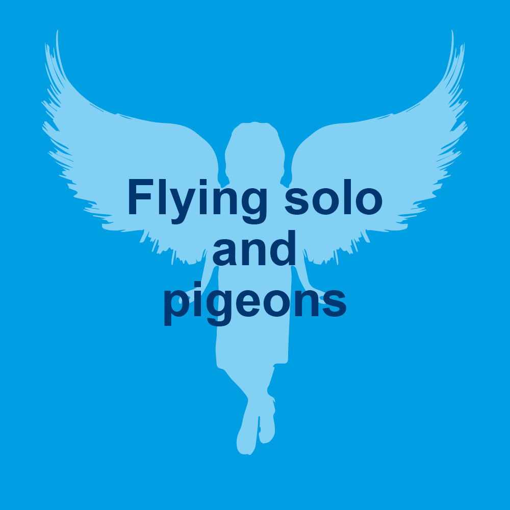 Flying Solo Tile NEW3