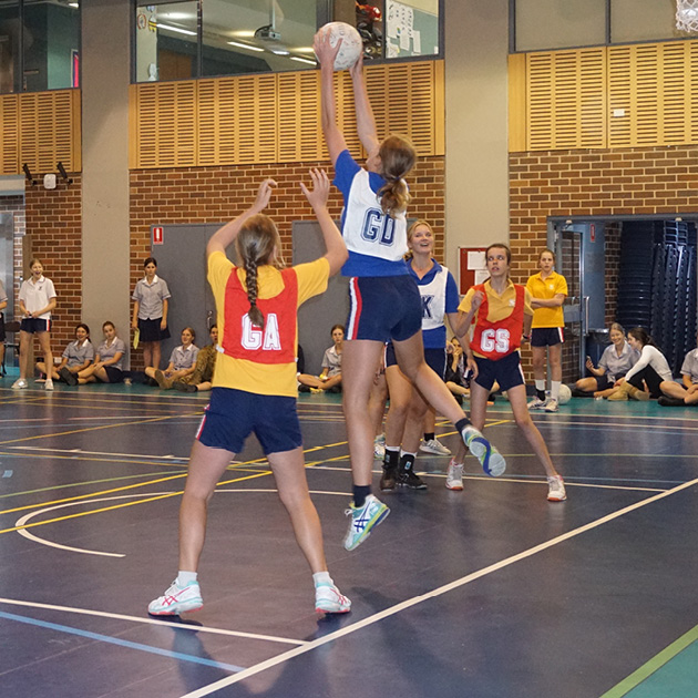 Netball WEB NEWS TEMPLATE T4
